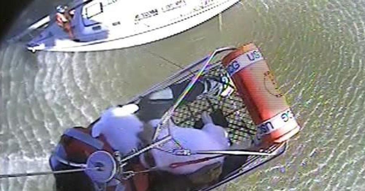 У США берегова охорона визволила з судна, яке сіло на мілину, трьох людей та двох чотирилапих