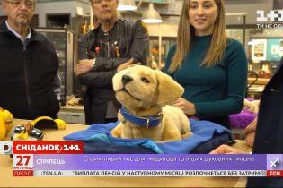 Роботы-собаки, портативный рукомойник и виртуальная реальность: ТОП изобретений 2020 года