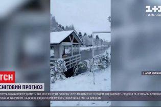 Зима близко: мокрый снег с дождем накроют юг и центр Украины