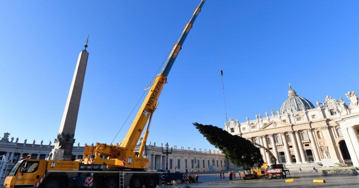 Фото: twitter.com/VaticanNews
