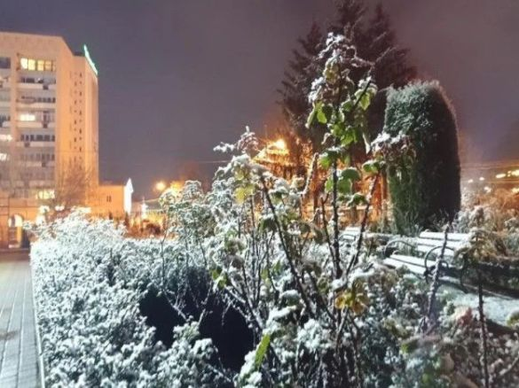 Сніг в Луцьку