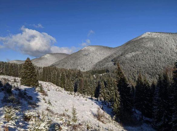 Сніг у Карпатах_3