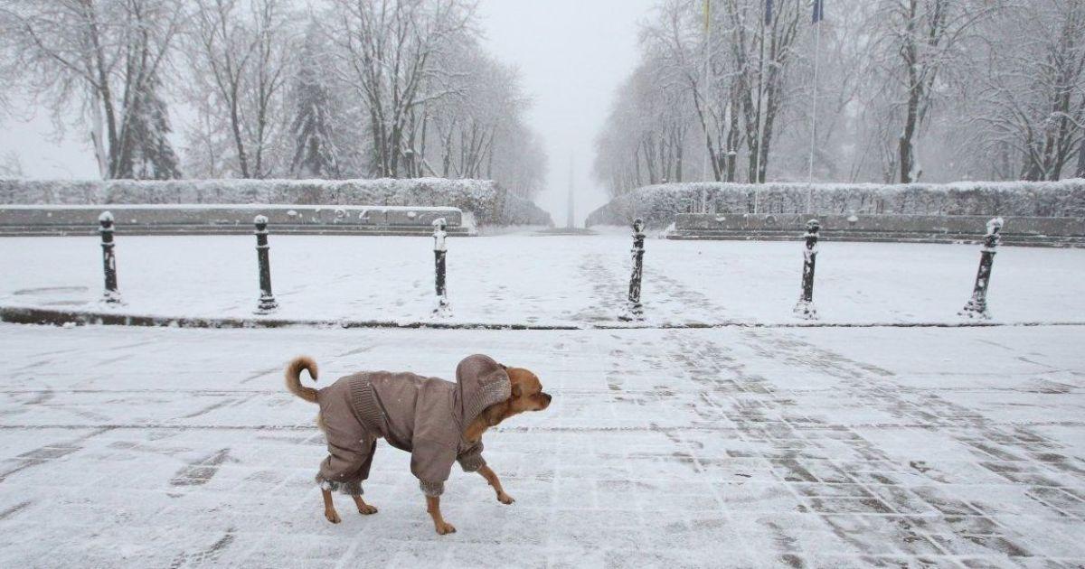 Снегопады парализовали все в Японии и США: чего ждать в Украине