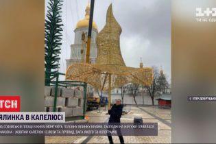 Елка в шляпе: на Софийской площади монтируют главное праздничное дерево страны