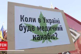 Безпечний канабіс: комісія при ООН виключила марихуану та похідні зі списку небезпечних наркотиків