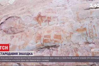 В лесах Амазонки нашли десятки тысяч рисунков ледникового периода