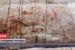 Древняя находка: в лесах Амазонки нашли рисунки, которым более 12,5 тысячи лет