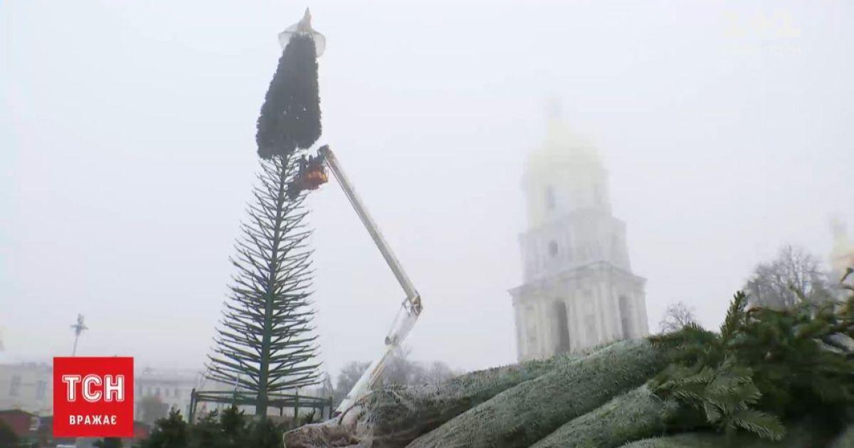 Новый год 2021: на главной елке страны появились первые искусственные ветки