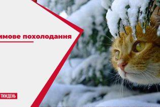 Зимове похолодання: чи варто українцям готувати теплі рукавиці та шапки