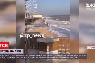 """Шторм в Запорожье затопил путь к президентской резиденции - заповедника """"Бирючий остров"""""""