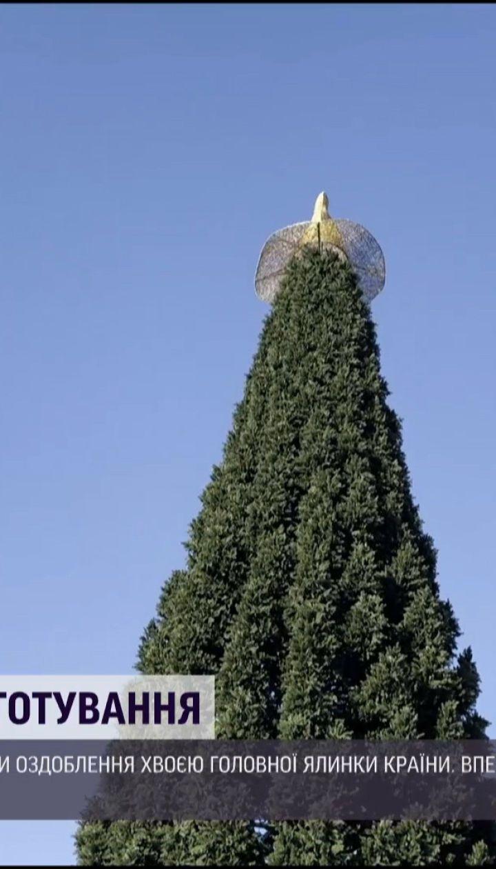 На Софийской площади завершили собирать главную елку страны: удивит ли она киевлян в этом году