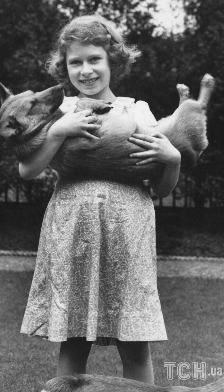 Королева Елизавета II с собаками породы корги