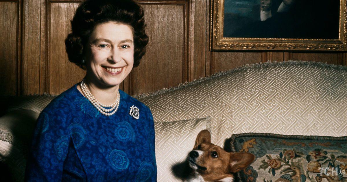 Остался последний питомец: несколько интересных фактов о собаках королевы Елизаветы II