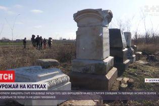 Врожай на кістках: у Запорізькій області фермери знищують єврейське кладовище
