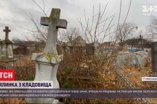 Новогоднюю елку, которая будет украшать центральную площадь Дубна, срубили на кладбище
