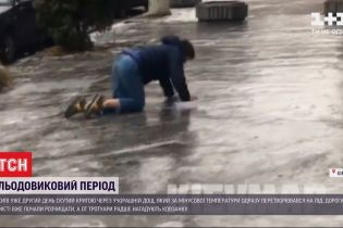 Ледниковый период: в Киеве из-за льда на дорогах образовались массовые заторы