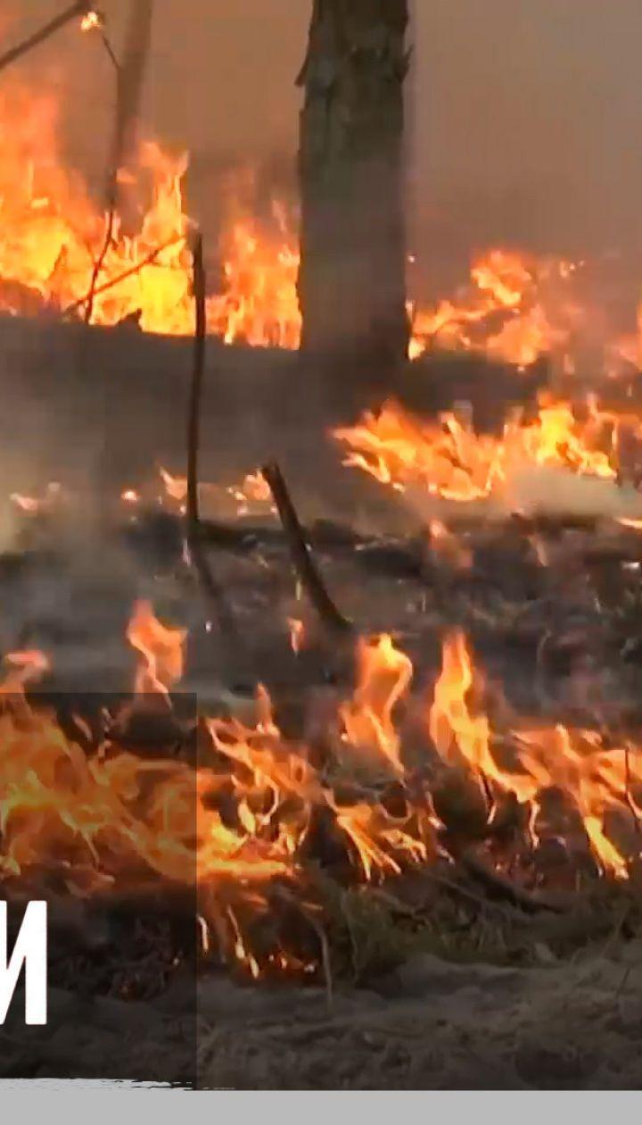 """Пожежі, посухи, повені: від яких катаклізмів постраждав весь світ 2020-го – """"Секретні матеріали"""""""