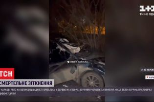 Злетів у кювет і врізався у дерево: у Харкові сталася аварія - водій авто загинув на місці