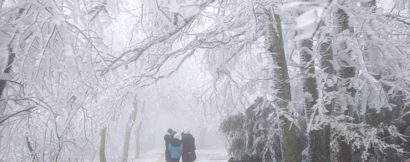 Снега не будет: синоптики рассказали, какая ожидается погода на Новый год