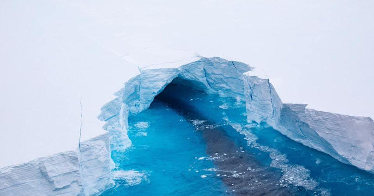 Один из крупнейших айсбергов планеты раскололся: почему это может стать проблемой