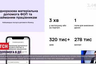 Більше 2 мільярдів гривень на допомогу: держава виплатила обіцяні 8 тисяч підприємцям