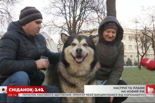 Как Киев готовится к празднованию нового года - прямое включение