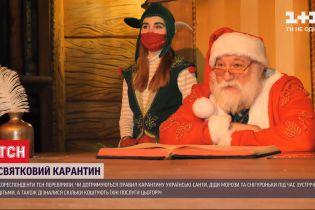 Новогодняя программа во время пандемии: сколько стоит поздравления Деда Мороза с отрицательным ПЦР-тестом