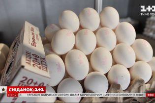 Підвищення цін на яйця та який бюджет українців на новорічний стіл - Економічні новини