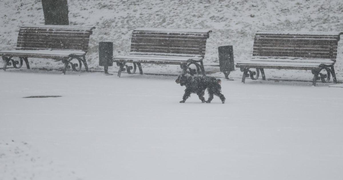 Морозы до минус 15°: синоптик рассказал, когда в Украину придет похолодание