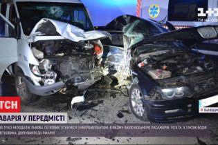 Велика аварія: у передмісті Львова зіштовхнулися легковик та бус - 9 людей опинились у лікарні