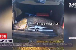 У Рівненській області рибалка спіймав сома-велетня