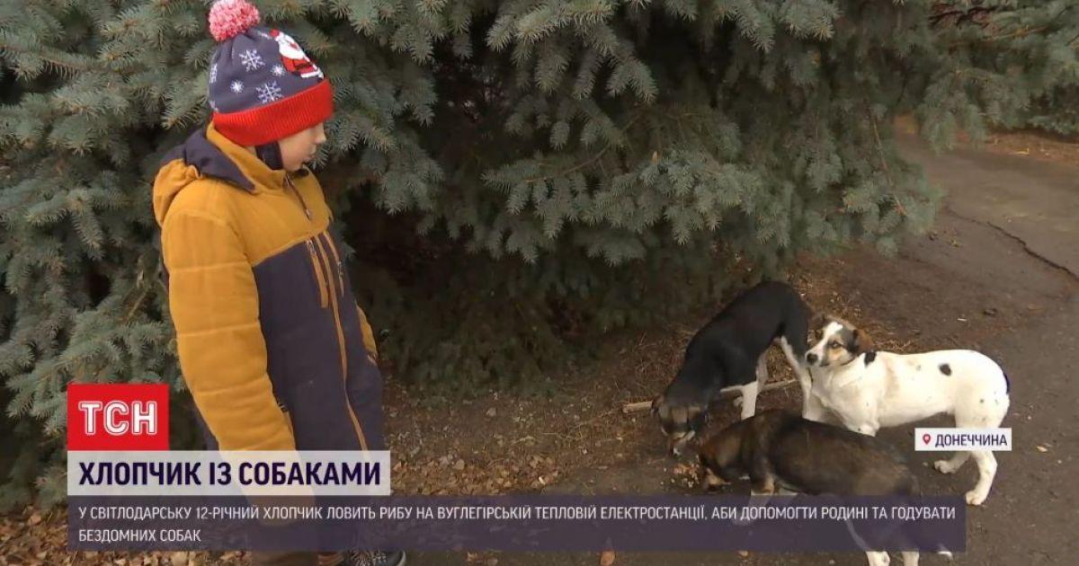 Мальчик-рыбак из Донбасса спасает бездомных собак: история доброты