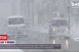 Жертвы метелей: в Японии из-за снегопадов погибли 8 человек, почти 3 сотни пострадали