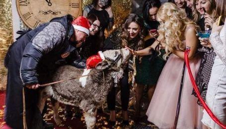 У Чернігові спалахнув скандал через теля на прив'язі на вечірці відомої косметичної компанії (фото)