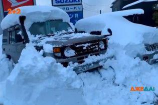 Снежный хаос в Японии