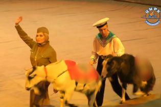 У російському цирку показали виставу з тваринами у нацистській символіці