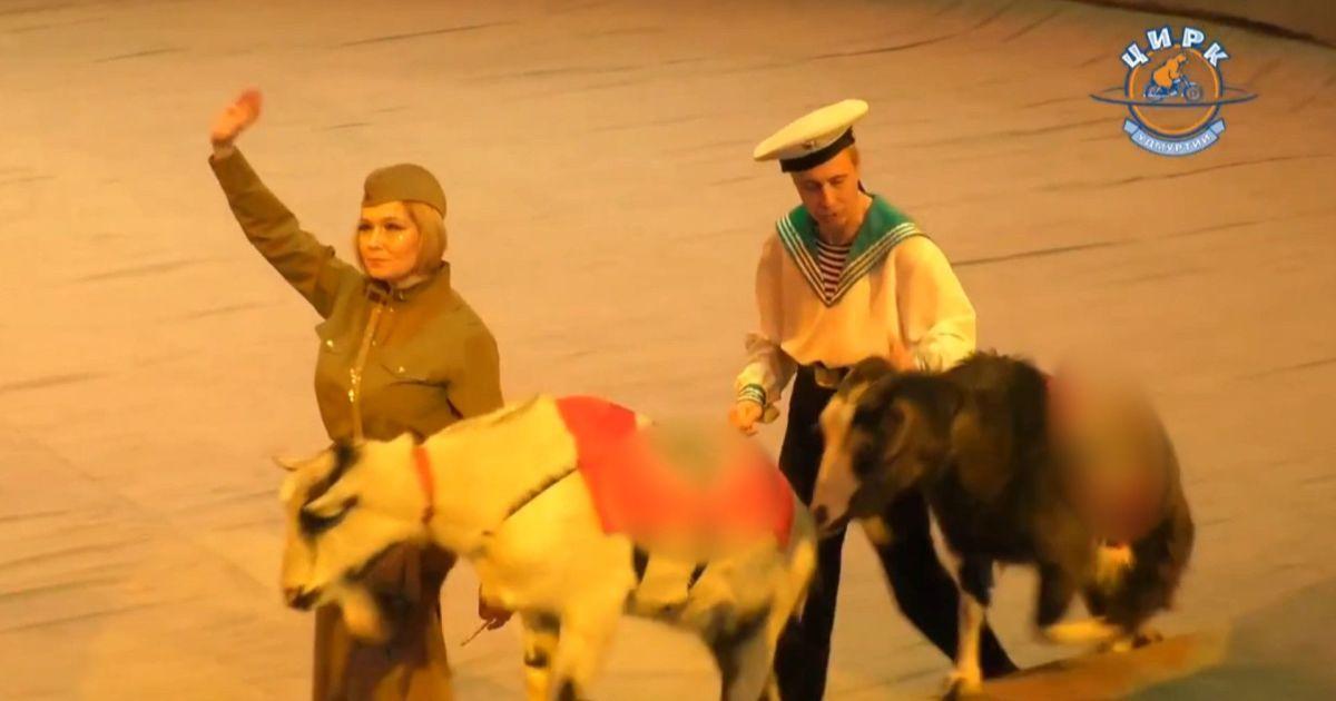 """У Росії цирк показав дітям виставу з тваринами у нацистській символиці, яких вели """"червоноармійці"""": відео"""