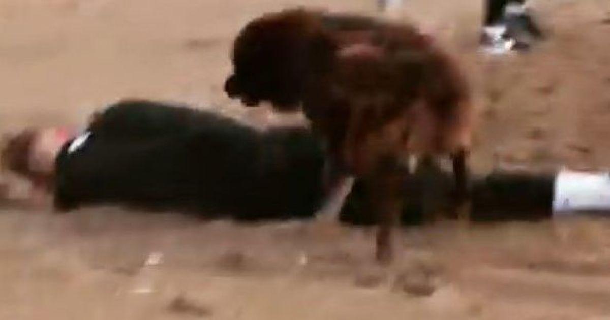 """""""Була любов"""": пес стрибнув і збив футболіста клубу УПЛ під час тренування в Туреччині (відео)"""