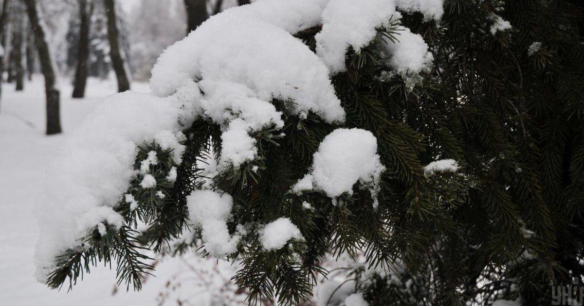 Старий Новий рік буде з морозами та снігом: прогноз погоди в Україні на четвер, 14 січня