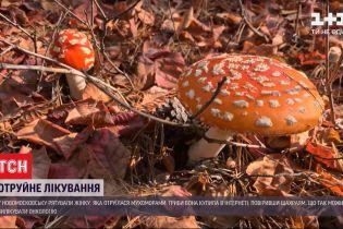 Мухомори проти раку: у Дніпропетровській області жінку шпиталізували з тяжким отруєнням