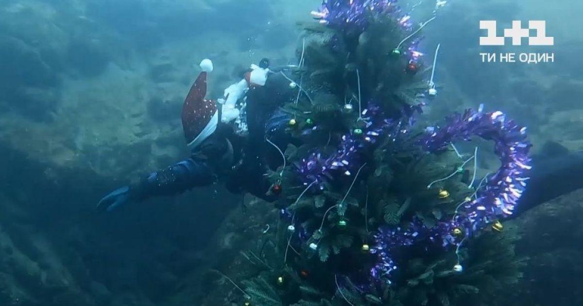 Старый Новый год под водой: дайверы в Днепропетровской области установили елку на глубине 32 метра