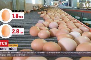 Стратегический продукт: почему в Украине подорожали яйца