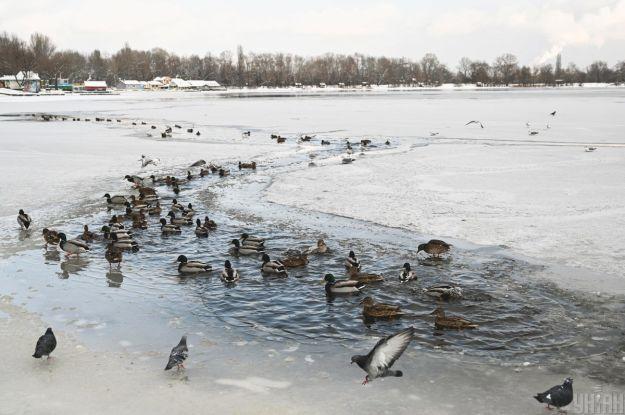 Преимущественно без осадков и до минус 25° мороза: прогноз погоды в Украине на воскресенье, 17 января