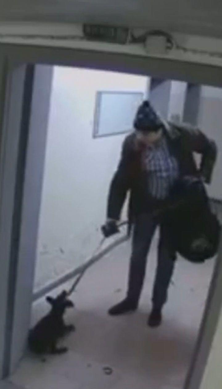 Пинал ногами, как футбольный мяч: в Киеве мужчина жестоко избил и выбросил щенка