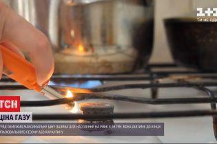 Газ подешевеет: чиновники приняли постановление, которым ограничили максимальную цену для населения