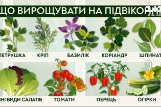 Выращиваем овощи на подоконнике вместе с Антониной Лесик