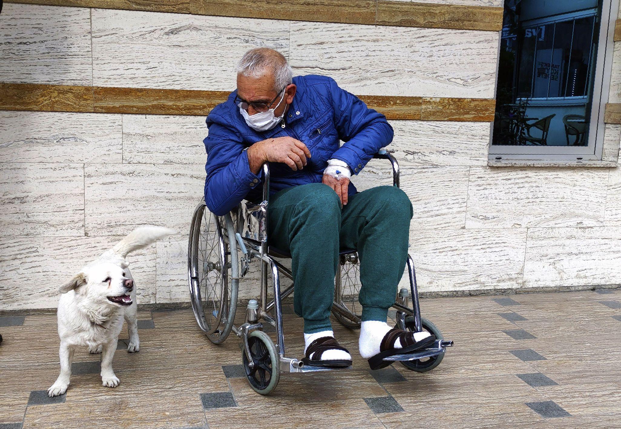 пес Бончук шукає свого господаря в лікарні 1