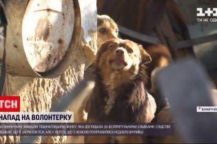 В Винницкой области нашли растерзанной женщину, которая ухаживала за бездомными псами