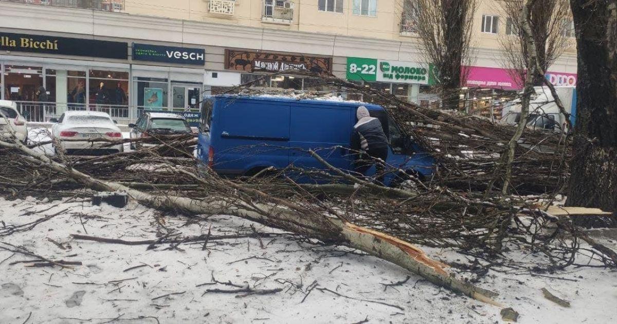 В Одессе из-за непогоды деревья упали на дом и автомобиль: есть пострадавший (фото, видео)