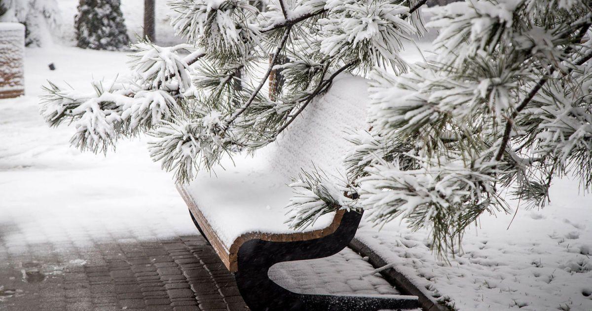 Традиції, свята та прикмети 9 лютого - Цікaвинки - TCH.ua